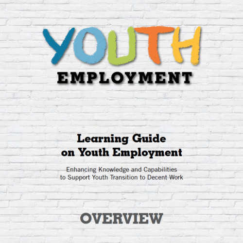 Learning guide on Youth Employment, Module 4: Measures for improving the employability of youth.
