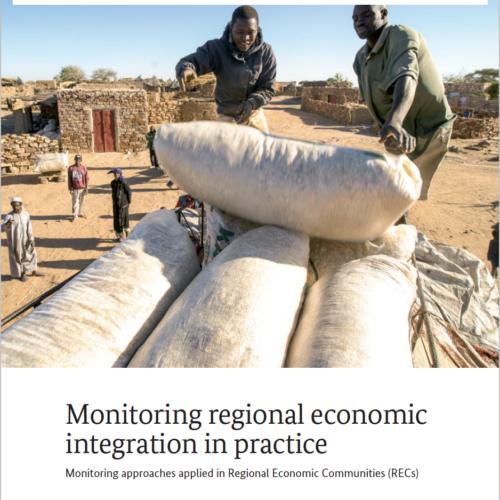 Monitoring regional economic integration in practice